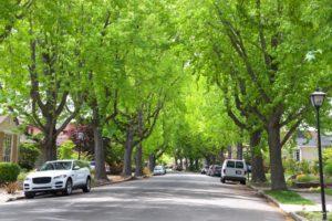 Trees in a neighborhood