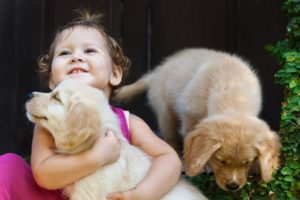 toddler playing with two dogs