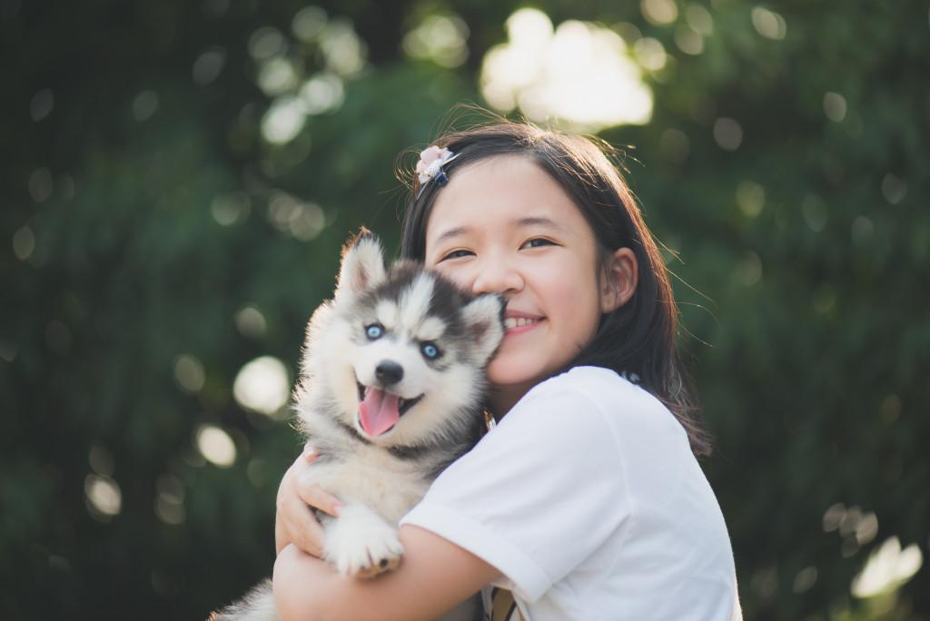 puppy husky and child