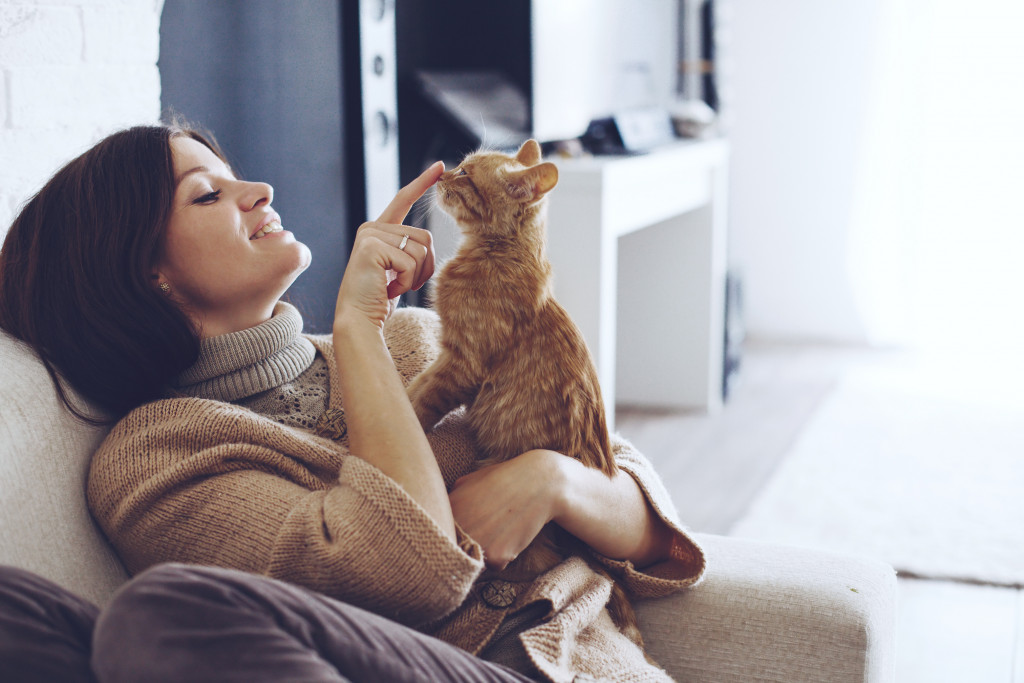 owner playing with cat